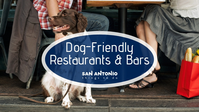 The Best Dog Friendly Restaurants and Bars in San Antonio